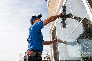window cleaning bay county