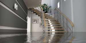 water damage west bay, water damage restoration west bay, water damage cleanup west bay